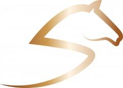 Logo (DPMA, 2020)