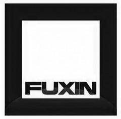 FUXIN Logo (DPMA, 2019)