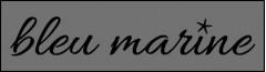 bleu marine Logo (IGE, 2019)