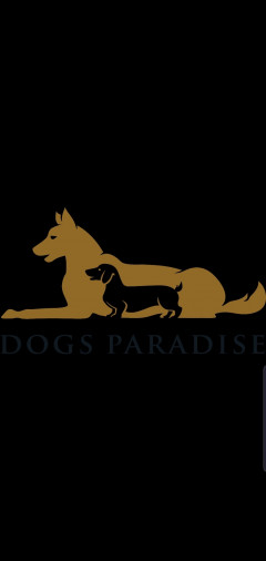 DOGS PARADISE