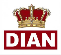 DIAN Logo (IGE, 2020)